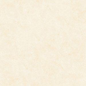 Gạch Gạch nhám dòng men khô (matt) MS621